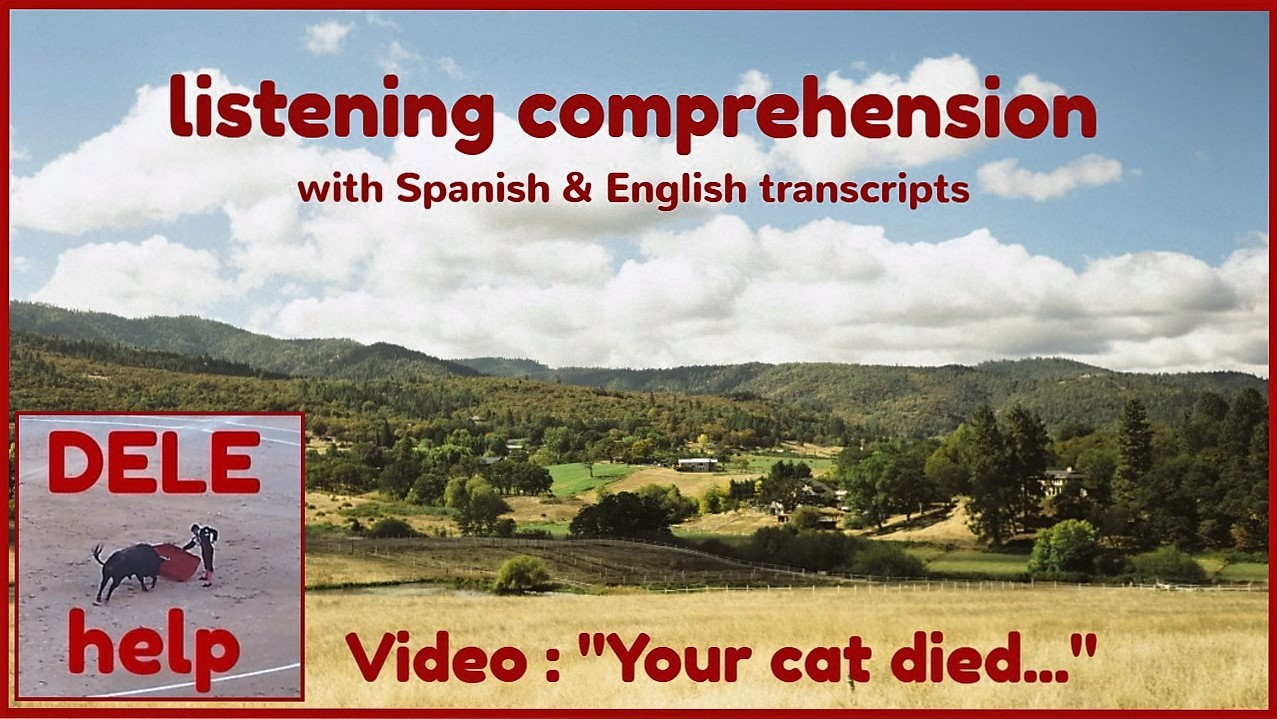 Video Your Cat Died