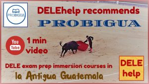 DELE exam preparation PROBIGUA